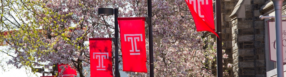 Temple University light pole banners, all red with white T logo hanging in the spring.