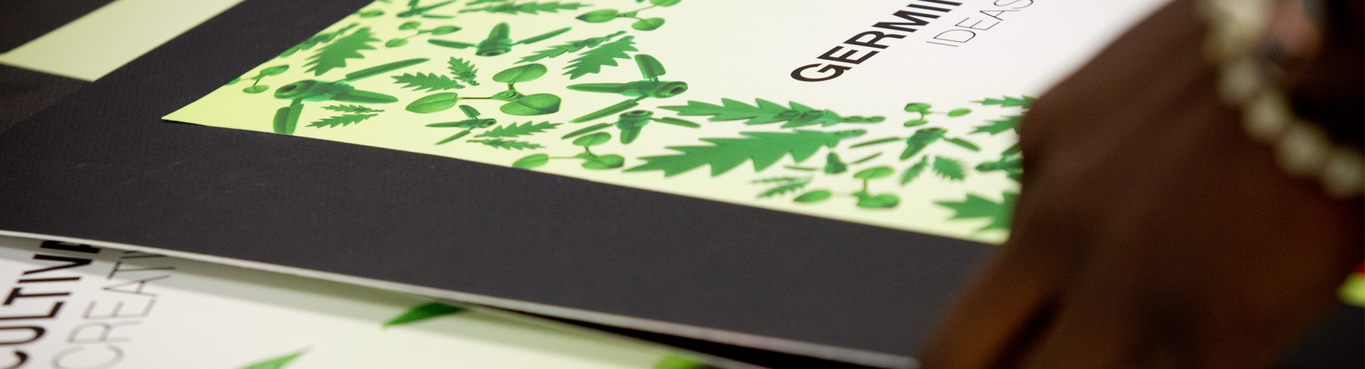 Close up of advertising books.